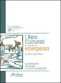 I beni culturali in condizioni di emergenza. La protezione nei musei e nei siti musealizzati