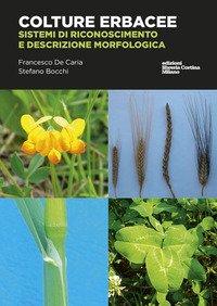 Colture erbacee. Riconoscimento e descrizione morfologica