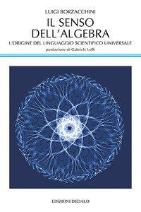 Il senso dell'algebra. L'origine del linguaggio scientifico universale