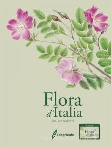 Flora d'Italia (vol. 4)