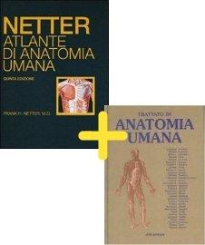 Trattato di anatomia umana Voll.1-3 + Netter. Atlante di anatomia umana formato deluxe