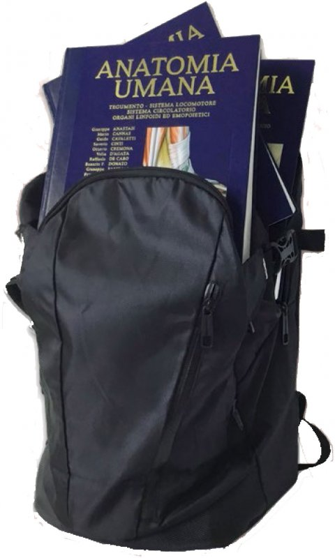 Anatomy Bag Plus: Trattato di anatomia umana-Anatomia topografica-Atlante di anatomia umana
