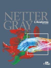 Netter Gray. L'anatomia: Anatomia del Gray-Atlante di anatomia umana di Netter