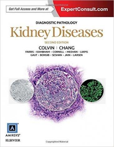 Dianostic pathology: Kidney disease