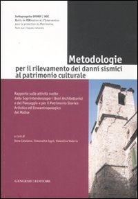 Metodologie per il rilevamento dei danni sismici al patrimonio culturale