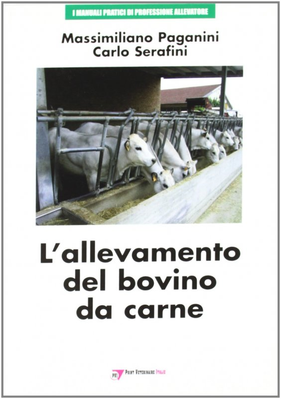 L'allevamento del bovino da carne
