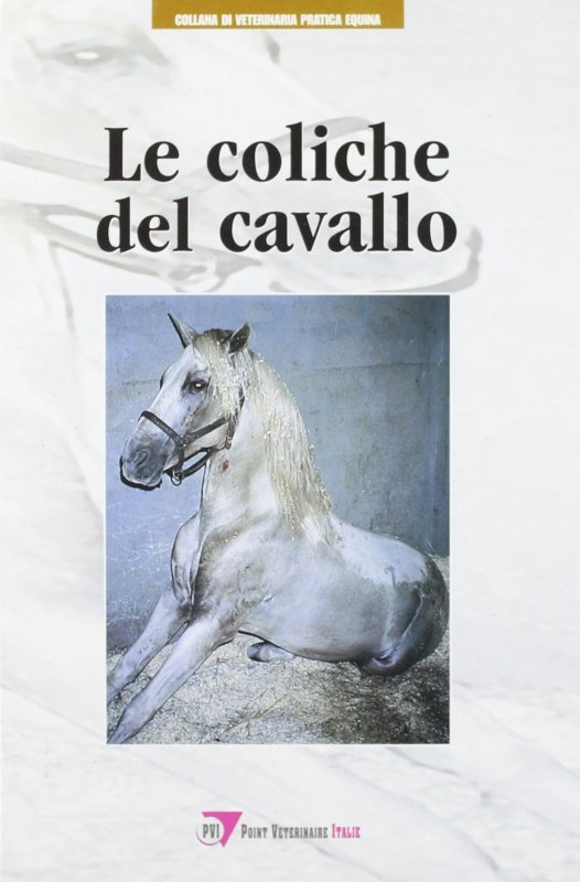 Le coliche del cavallo