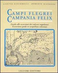 Campi Flegrei. Campania Felix. Il golfo di Napoli tra storia ed eruzioni. Guida alle escursioni dei vulcani napoletani
