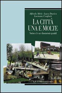 La città, una e molte: Torino e le sue dimensioni spaziali