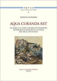 Aqua curanda est. Le acque e il loro utilizzo nei territori di Friburgo in Brisgovia e Catania dal XIII al XVI secolo