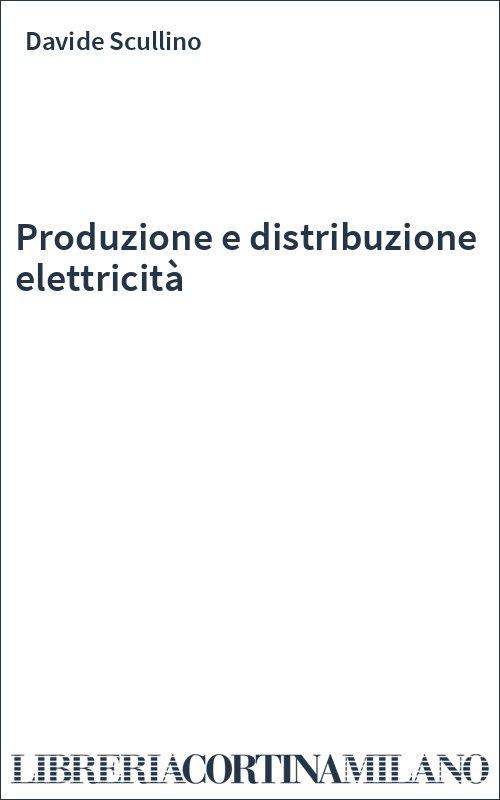 Produzione e distribuzione elettricità