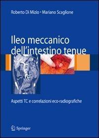 Ileo meccanico dell'intestino tenue: aspetti TC e correlazioni eco-radiografiche
