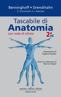 Brizzi Anatomia Topografica Pdf